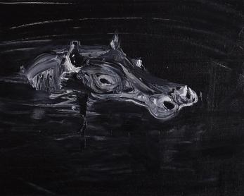 Michał Szuszkiewicz - Hipopotam